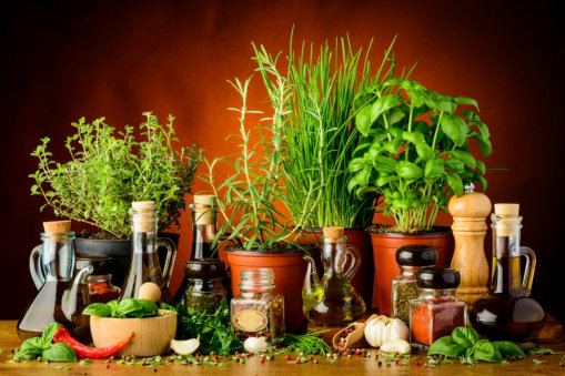 Discovering the Magic of Herbs and Spices